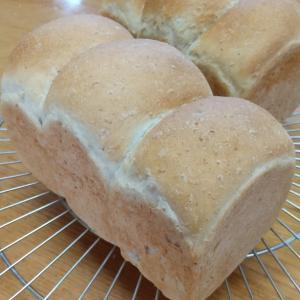 オートミールのミニ食パン