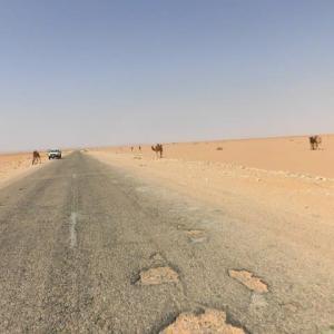 「アルジェリア」編 エル・ゴレア~ティミムーン サハラ砂漠5