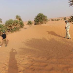 「アルジェリア」編 ティミムーン8 サハラ砂漠7