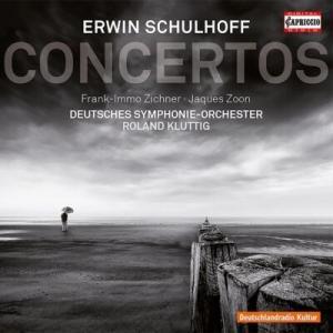 シュルホフ作曲『フルートとピアノ、弦楽合奏、2つのホルンのための二重協奏曲』