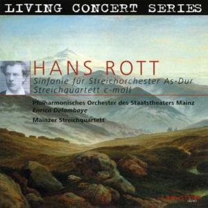 ロット作曲『弦楽オーケストラのための交響曲』