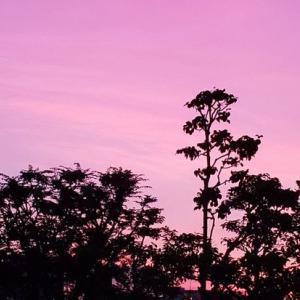 台風前の夕空。