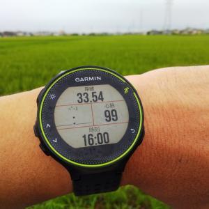オンライン24時間マラソン 暫定結果