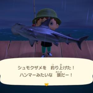 あつまれどうぶつの森 シュモクザメを海で釣り上げる たまらないぜこのヒレ魚影&サイズ感!【生息時期、場所、時間等の画像】