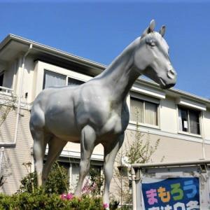 HORSE CAMP KAMAKURA
