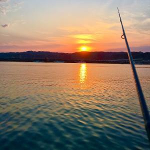 海釣り始めました