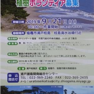 9月21日(土)桂島に黒松を植えるボランティアに参加しよう!
