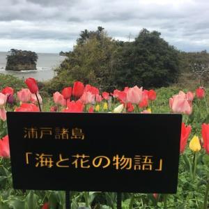 20200419 浦戸諸島「海と花の物語」の看板を設置しました