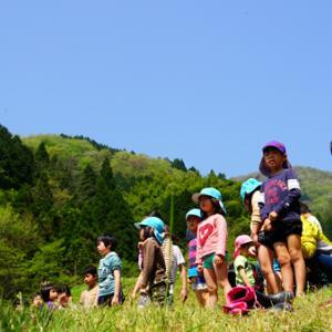 津和野で一番早い田植え