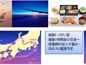 JALは、成田発着~空行きの周遊チャーター「空たび 星空フライト」を運航!