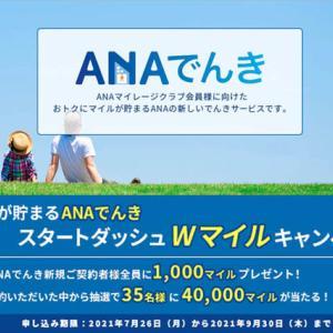 ANAは、電気代でマイルが貯まる「ANAでんき」を開始、今ならもれなく1,000マイル!