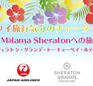 JALは、ハワイ気分のチャーター便に、ハワイ気分のシェラトン宿泊をセットで販売!