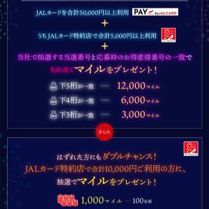 JALは、JALカードの利用と、抽選番号の一致で、もれなくマイルが当たるキャンペーンを開催!