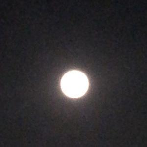 月が泣いた朝