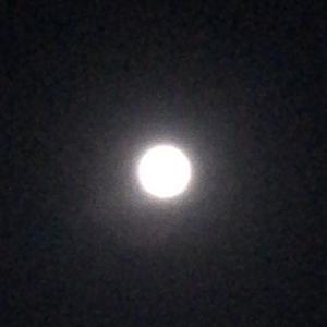 コールド・ムーン(令和元年最後の満月)