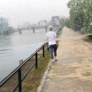 ポツポツ雨の中のお散歩