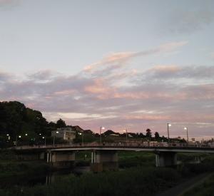 早朝 犀川散歩