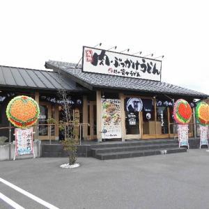 徳島 肉ぶっかけ 富士うどん・藍住店(豚肉ぶっかけうどん冷小)420円