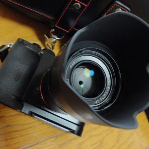 去年買ったレンズ、SONY FE 55mm F1.8 ZA SEL55F18Z