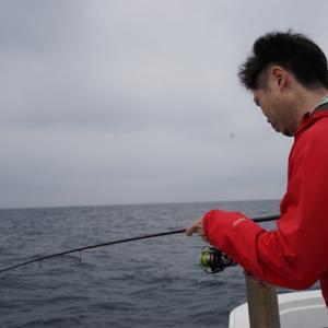 タイ釣りをしてました、5月