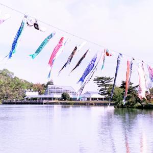 兵庫県立フラワーセンター ♡ 素敵な園芸公園♡♡♡