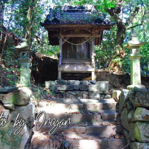 坂本神社 - 芸西村にある土佐延喜式二十一社のもう一つの坂本神社