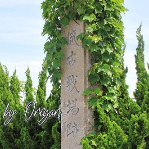 八流古戦場 - 土佐国統一を目指す長宗我部元親と安芸国虎の合戦地