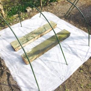 椎茸栽培を始める