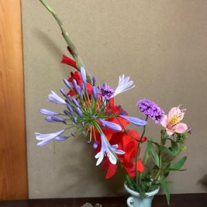家の周りに咲いていた花