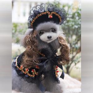 ハロウィン犬服★こんなのどうですか?