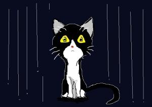 どうも、湿っぽいね。