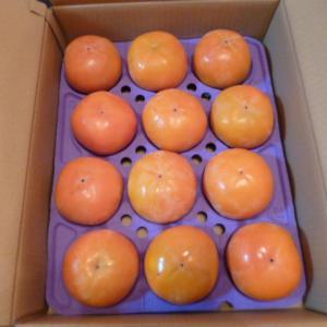 レシップHDから柿が到着