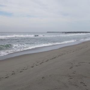今日の海、かなり波落ちた?