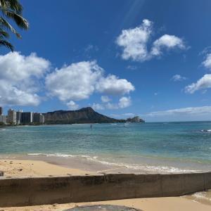 Hawaii 2020  カヴェヘヴェヘ