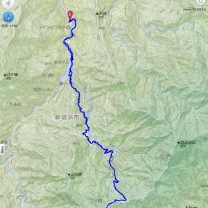 銅山峰-西山トレッキング 山のてっぺんで珈琲 ツガザクラも