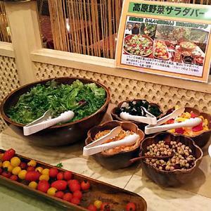 新宿東口「サムラート」でインドカレー飲み放題