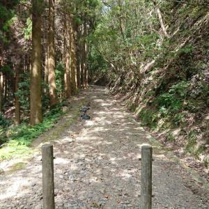【186】国防最前線の対馬に残る古代山城の金田城。