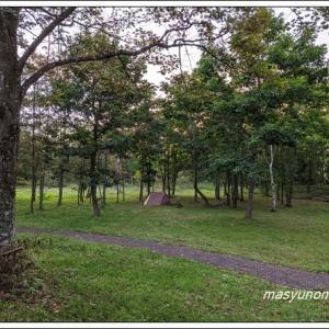 スタートは森のキャンプでカレーを喰らう?!