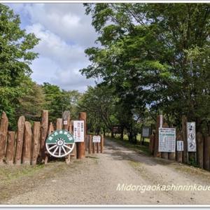 見学! 緑ヶ丘森林公園キャンプ場