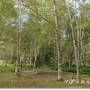 理想の林間野営場でソロキャンプ 国設ぬかびら野営場