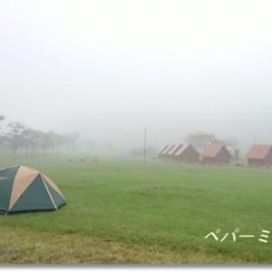 アキラメからの大成功!! 超お気に入り発見のキャンプ場