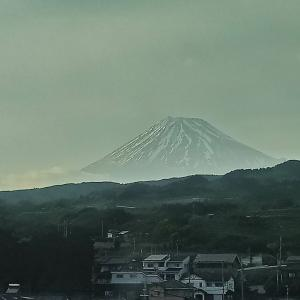 東京へ行ってきました♪