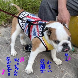 犬より人が好きなタイプ(^_^;)