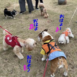 お友達いっぱいの日(*^▽^*)