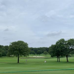 ゴルフ観戦:2019 サマンサタバサ ガールズコレクション・レディーストーナメント