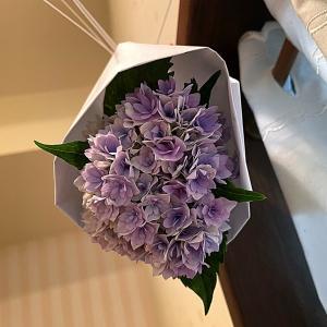 トイレの神様と紫陽花