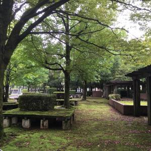 グリーンセンター  パート2