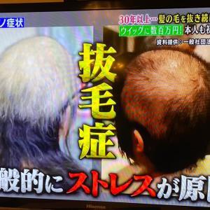 抜毛症改善カウンセラー®3期生募集!!:持続化補助金対象!!