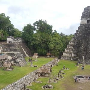 【グアテマラ】マヤ最大の神殿都市ティカル遺跡の観光情報2020年版~フローレスからの行き方