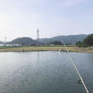 管理釣り場でのんびり釣りしてみた